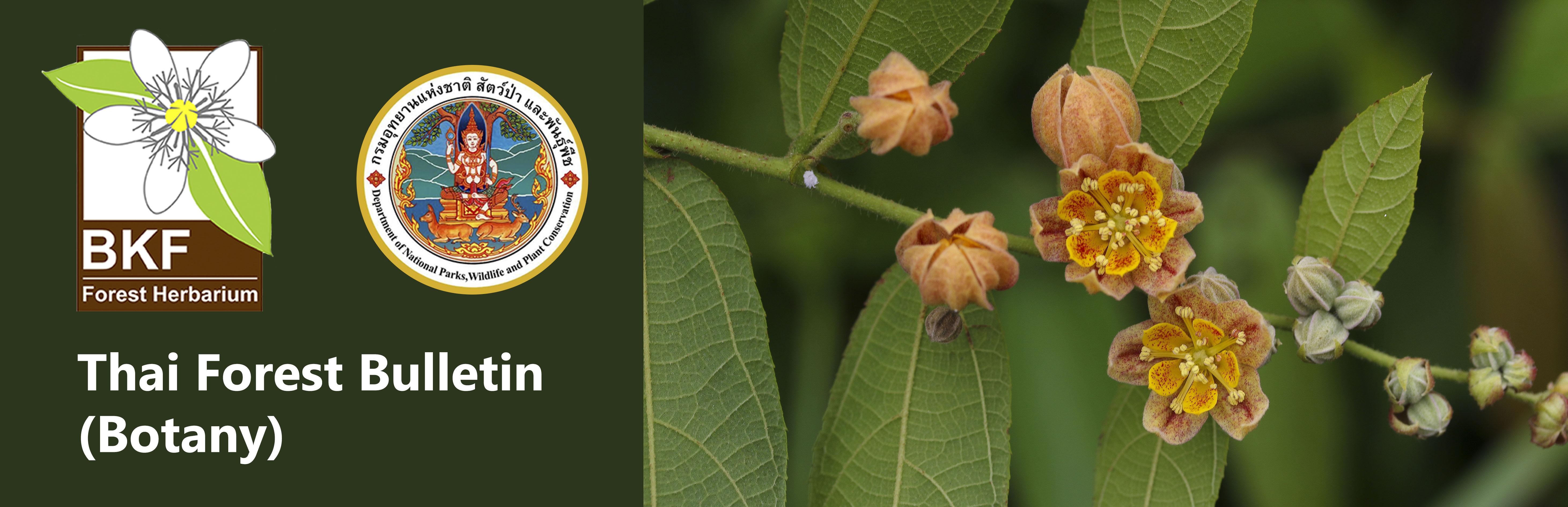 Thai Forest Bulletin (Botany)